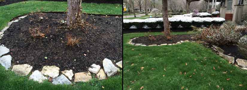 Example of photos needed for plant replacements
